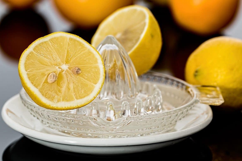lemon squeezer lemon juice citrus citric acid